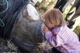 """Khoảnh khắc ngọt ngào khi cô bé 3 tuổi nhẹ nhàng hôn lên chú tê giác bị cưa sừng được mọi người ví như """"người đẹp và quái vật""""."""