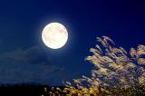 Hai thế giới dưới ánh trăng xanh