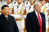 Trump-Tap
