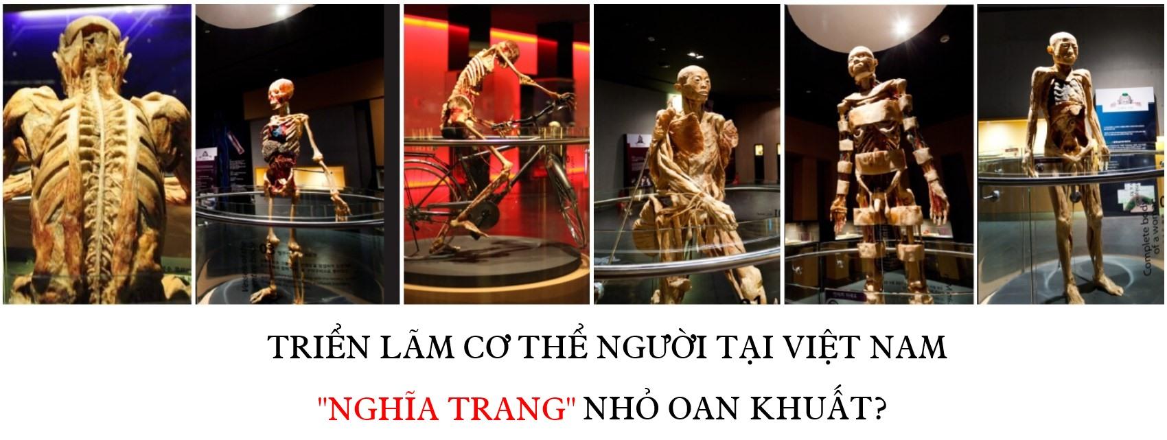 """Triển lãm cơ thể người tại Việt Nam hay """"nghĩa trang"""" nhỏ oan khuất?"""