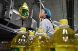 Trung Quốc tăng mua gấp đôi đậu nành Mỹ trước cuộc bầu cử tháng 11