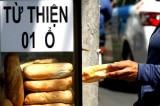 Tình nghĩa Sài Gòn: Sài Gòn đâu có dửng dưng