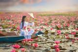 Thiện niệm là phong thủy tốt nhất cho cuộc đời bạn, Sự dịu dàng của người phụ nữ là hạnh phúc một đời của người đàn ông