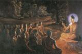 500 người mù đi tìm đức Phật