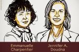 Phương pháp chỉnh sửa gene đoạt giải Nobel Hóa học 2020