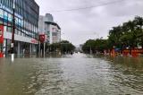 Hà Tĩnh: Huyện Cẩm Xuyên thiệt hại hơn 1.100 tỷ đồng do mưa lũ