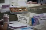 Kiểm lại phiếu ở Georgia: Phát hiện 2.600 lá phiếu bị bỏ sót