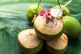 4 lợi ích sức khỏe đã được khoa học chứng minh của nước dừa